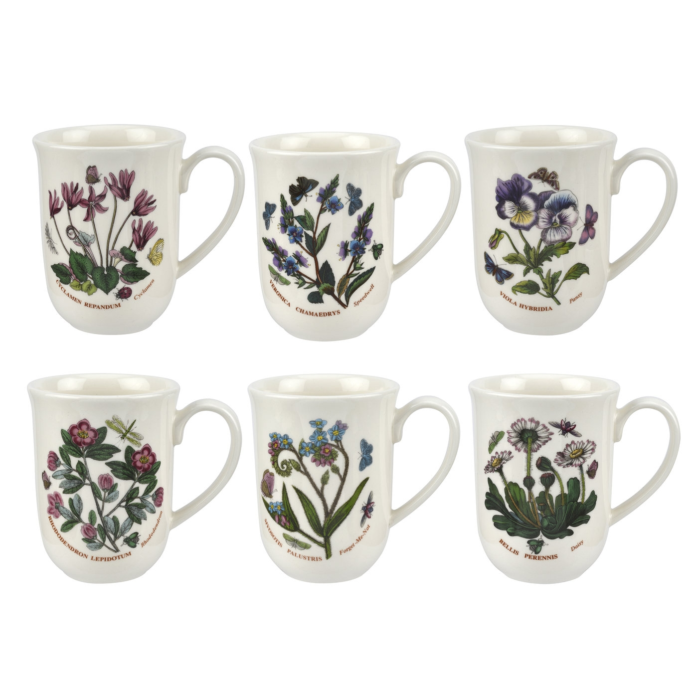 Botanic Garden 11.5 Ounce Tulip Beaker Mug Set of 6 (Assorted Motifs) image number null