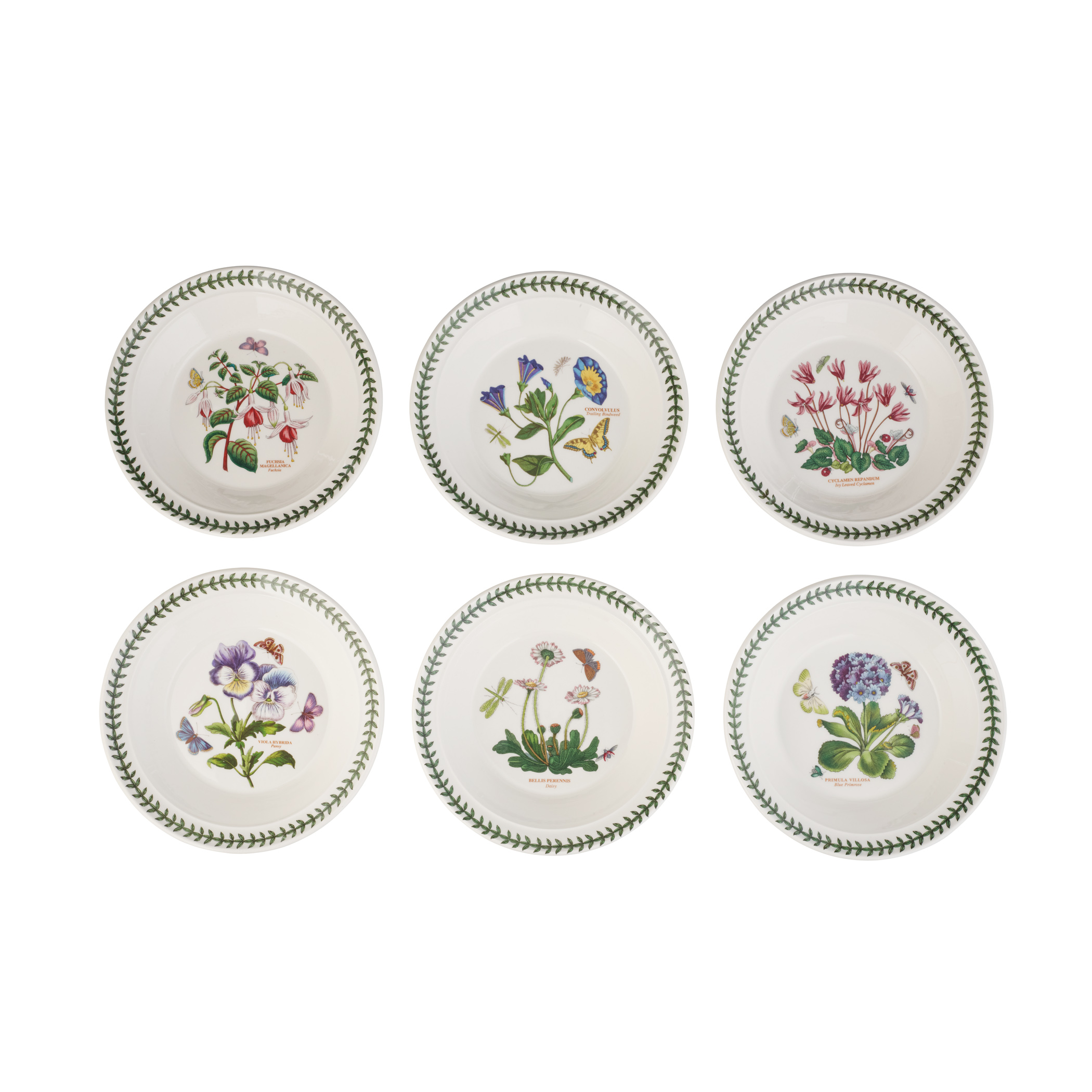 Botanic Garden 8.5 Inch Soup Plate/Bowl Set of 6 (Assorted Motifs) image number null