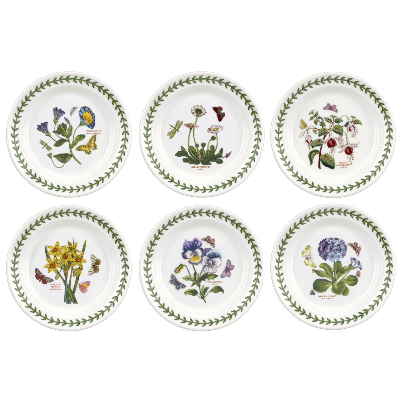 Botanic Garden 6.5 Inch Side Plate Set of 6 (Assorted Motifs) image number null